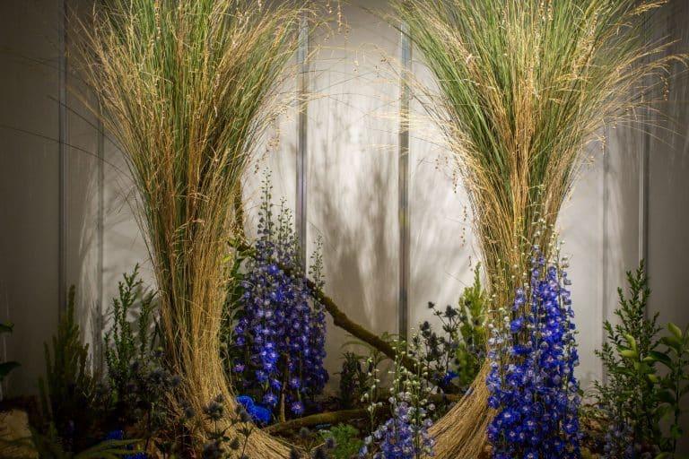 Shop Window Floral Design Competition - Melbourne ...